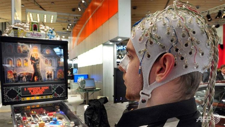 Giác quan của con người nhờ những thông tin được não xử lý.