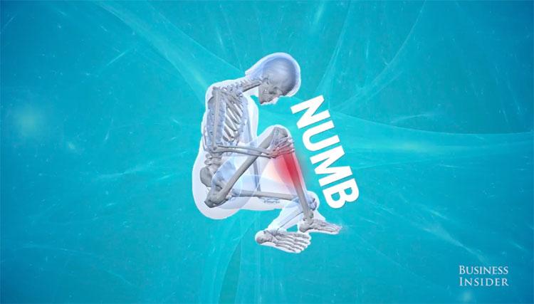 Khi ngồi lâu, bạn đã chèn ép lên 1 phần dây thần kinh nhất định của cơ thể.
