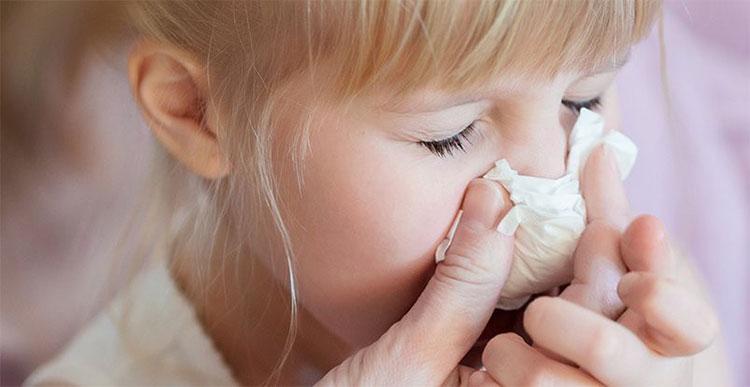Các virus cúm gây ra đại dịch đều thuộc chủng cúm A.