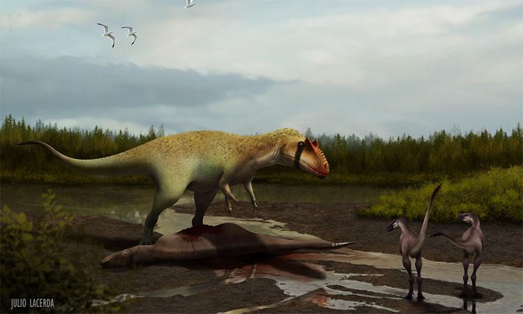 Tổ tiên của khủng long bạo chúa vẫn xếp dưới loài quái dị long trong chuỗi thức ăn.