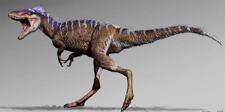 Hình ảnh phục dựng loài Moros intrepidus.