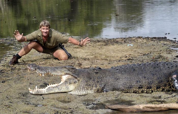 Hình ảnh Stephen Robert Irwin và cá sấu.