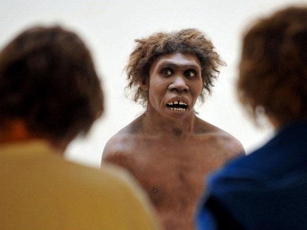 Người Neanderthal.