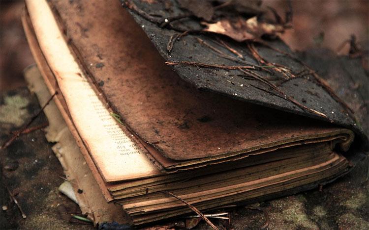 Nhà văn Đức Johann Wolfgang von Goethe và tập bản thảo cuốn sách của ông.