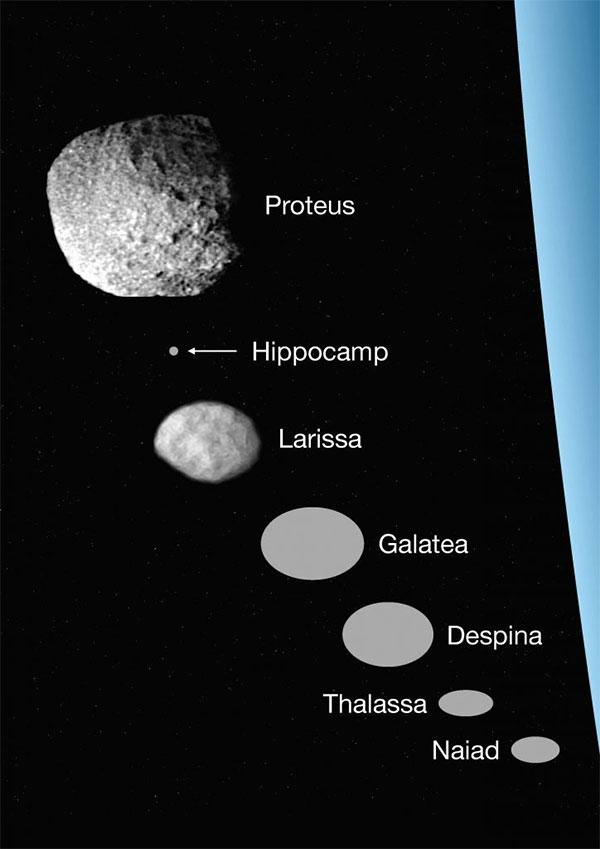 Các mặt trăng ở vòng trong của sao Hải Vương.