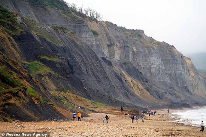 Khu vực tìm thấy hóa thạch kỷ băng hà