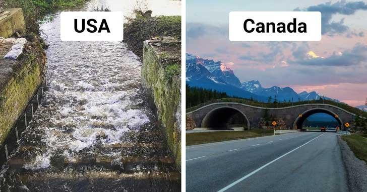 Tại bang Oregon (Mỹ), người ta còn xây nhiều kênh dẫn nước để giúp cá hồi vượt sông an toàn mỗi mùa sinh sản.