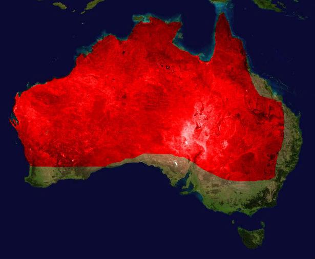Phạm vi sinh sống của rắn Mulga (màu đỏ) tại Úc