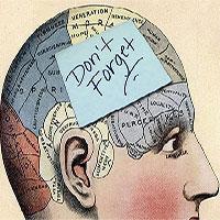 12 điều bất thường thú vị về trí nhớ mà mọi người nên biết
