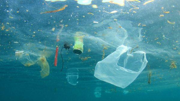 Công trình nghiên cứu loại bỏ chất thải nhựa ở đại dương của Kazi đã khiến nhiều tổ chức và nhà khoa học quốc tế chú ý.