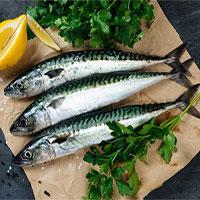 Tăng cường ăn cá biển có thể giúp giảm phát triển khối u ung thư vú đến 50%