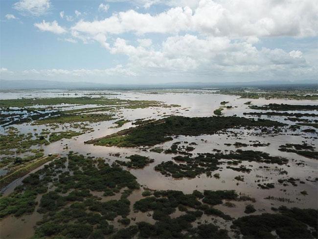 Tổng thống Zimbabwe Emmerson Mnangagwa đã đến khu vực bị ngập lụt vào ngày 19/3 và dự kiến bay trực thăng đến các địa điểm thảm họa vào ngày 20/3.
