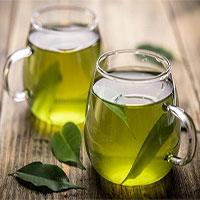 Nghiên cứu mới khẳng định: Chiết xuất trà xanh giúp giảm viêm và chống béo phì