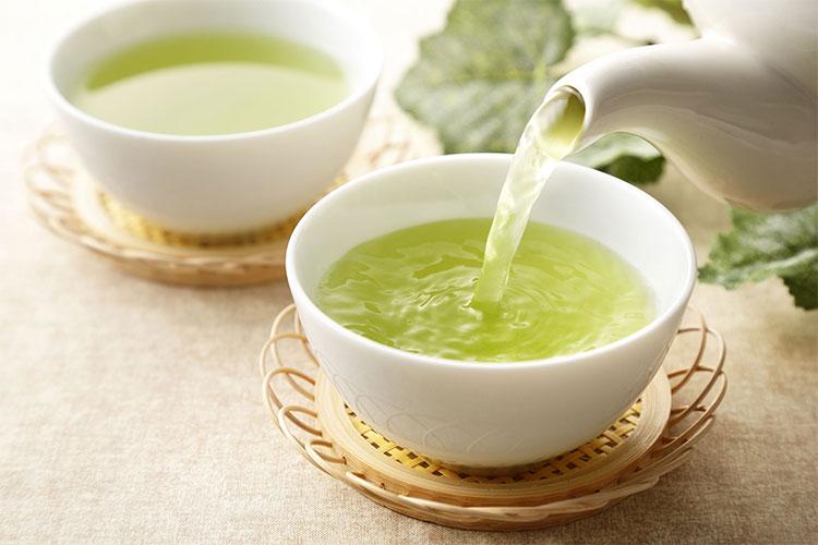 Chiết xuất trà xanh đã kích thích sự phát triển của vi khuẩn có lợi ở đường ruột.