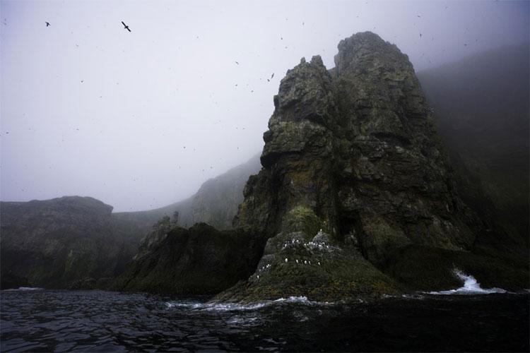 Đảo Gấu