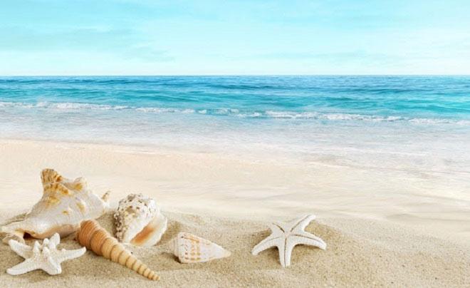 Bãi biển được cho là tiềm ẩn nhiều vi khuẩn gây ngứa, dị ứng, rối loạn tiêu hóa.