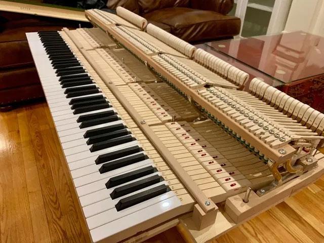 """Bạn sẽ hiểu rõ hơn về cách một chiếc đàn piano hoạt động, khi được mục sở thị phiên bản """"trần trụi"""" của nó."""