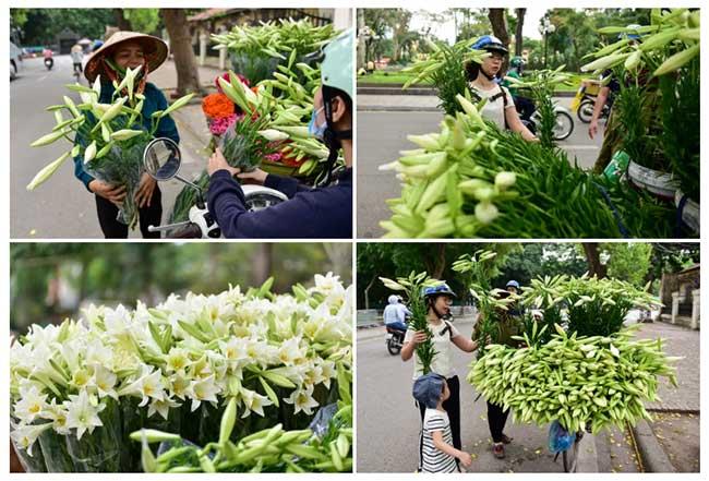 """Dạo quanh Hà Nội những ngày này mới thấy được hết cái hay của câu hát: """"Tháng tư Loa kèn mỏng manh, những góc phố con đường quen…"""""""