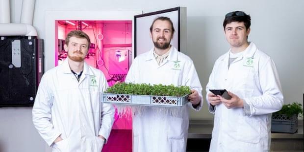 Công nghệ khí canh (aeroponics) sẽ mang đến cho nông dân cơ hội trồng rau xanh ở bất kỳ khu vực nào