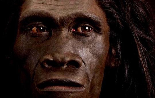 Người Homo erectus, từng được cho là chủ nhân của những chiếc răng