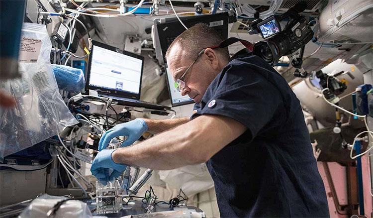Phi hành gia dùng tăm bông để lấy mẫu vi khuẩn bên trong ISS.