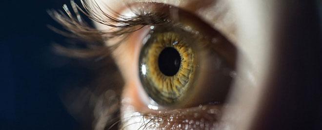 Đây là hình ảnh về một con mắt bình thường.