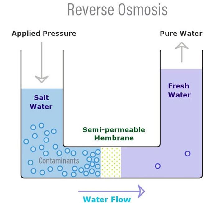Khi thẩm thấu ngược, áp suất được áp dụng để giữ nước khỏi di chuyển sang dung dịch có nồng độ cao.
