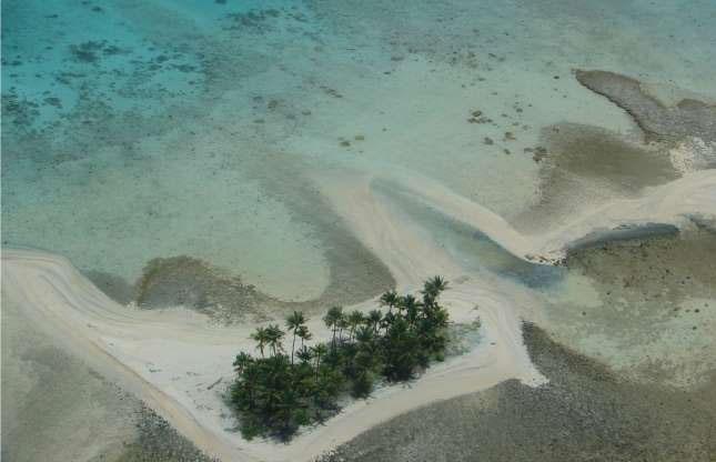 Đảo san hô bikini