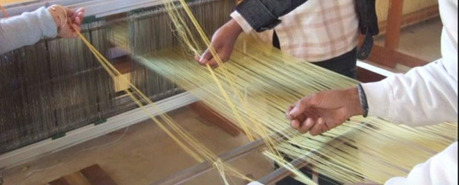 Rất khó sản xuất tơ nhện theo cách truyền thống.
