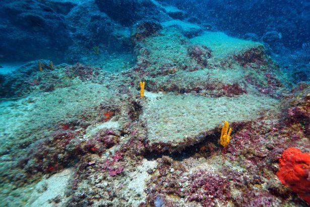 Nhà khảo cổ học Hakan Oniz cho biết đây có thể là con tàu thương mại lâu đời nhất từng được phát hiện.