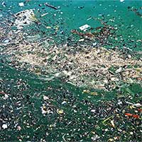 Lần đầu tiên phát hiện các hạt nhựa siêu nhỏ microplastic trong phân người