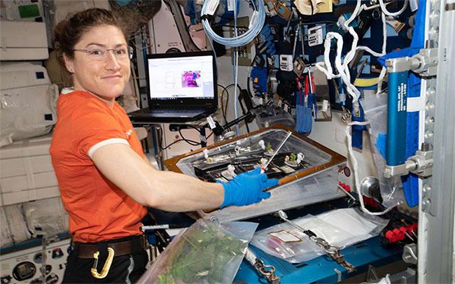 Phi hành gia Christina Koch làm việc trên trạm ISS.