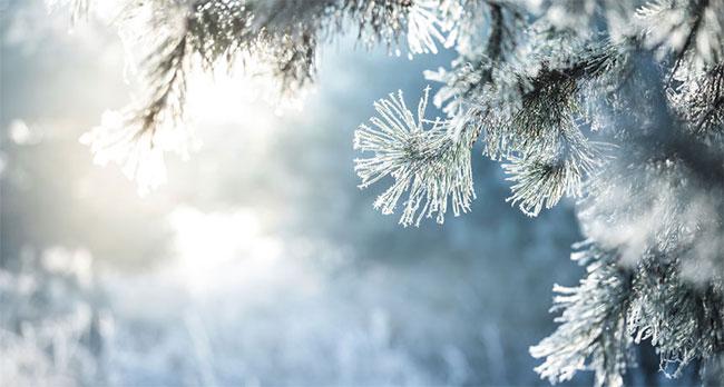 Băng và tuyết