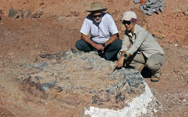 Nhà khảo cổ Argentina bên cạnh hóa thạch khủng long được tìm thấy ở khu vực.