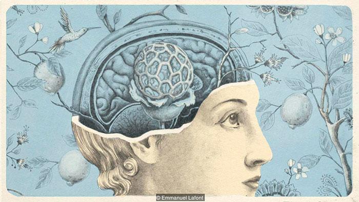 Giống như cơ thể, bộ não cũng cần không khí sạch để hoạt động và phát triển