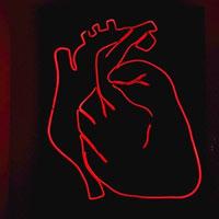 Miếng dán hydrogel giá rẻ có thể làm giảm thiệt hại sau cơn đau tim