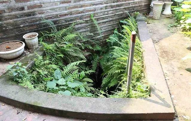 Ở đình Quán La (Xuân La Tây Hồ, Hà Nội) tồi tại một cửa hang dẫn xuống hầm ngầm đầy bí ẩn