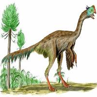 """Những loài khủng long hình thù """"quái đản"""" nhất thế giới"""