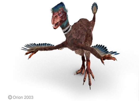 Khủng long Incisivosaurus