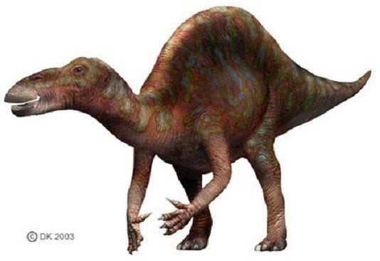 Khủng long Ouranosaurus