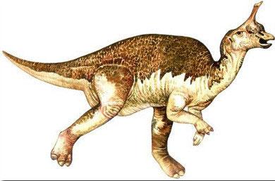 Khủng long Tsintaosaurus