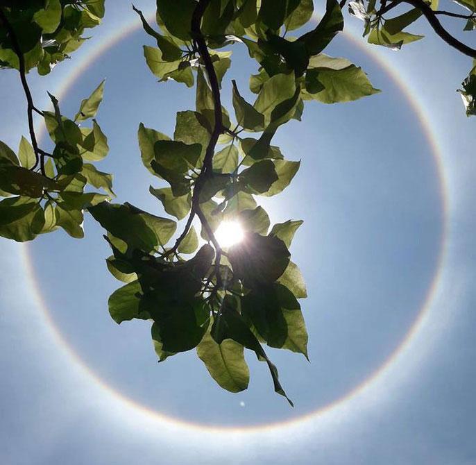 Hình ảnh mặt trời khá lạ lẫm khiến nhiều người thích thú.
