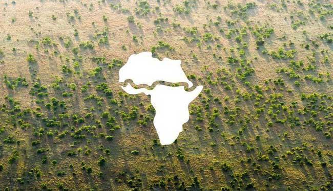 """Vì biến đổi khí hậu, châu Phi đã quyết định thực hiện dự án """"khủng"""" này."""