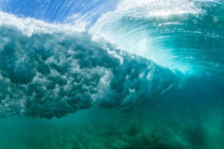 Những cơn bão chắc chắn rơi vào mặt tiêu cực đối với các sinh vật biển.