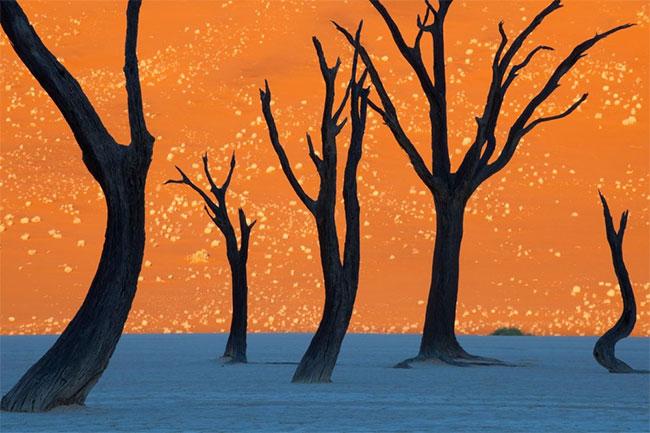 Công viên Namib-Naukluft