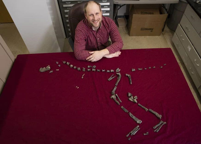 Sterling Nesbitt bên cạnh xương hóa thạch của Suskityrannus hazelae
