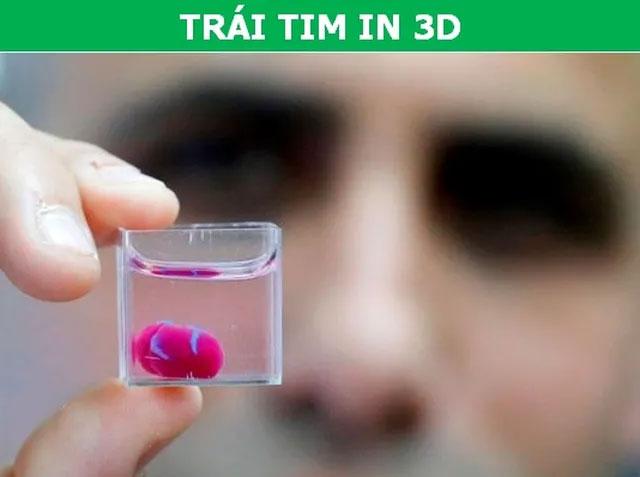 Trái tim nhân tạo hiện mới chỉ có kích thước bằng tim thỏ tuy nhiên nó đã có thể vận hành trơn tru.