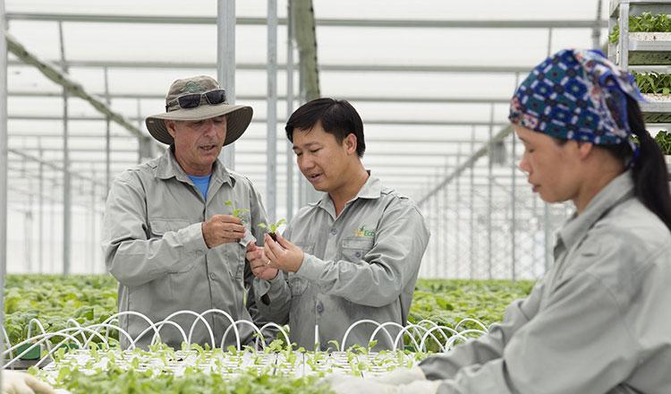 Thu hút doanh nghiệp đầu tư vào nông nghiệp để đưa nhanh công nghệ cao ứng dụng tại Việt Nam.