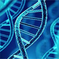 Phát hiện người đàn ông có ADN lâu đời nhất ở Bắc Mỹ