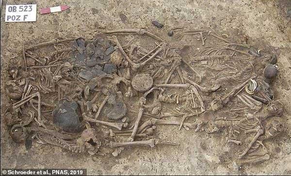 Hài cốt được tìm thấy trong ngôi mộ cổ ở Ba Lan.